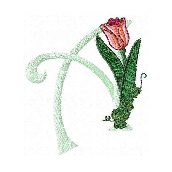 Alfabeto Tulipa