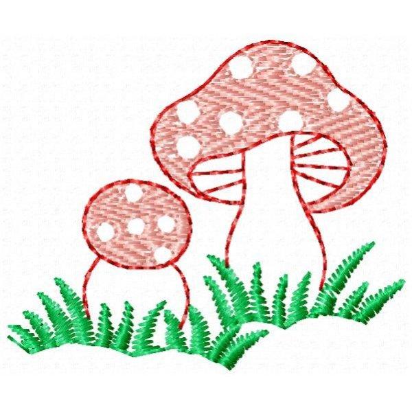 Cogumelos 001