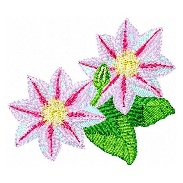 Floral Dakota