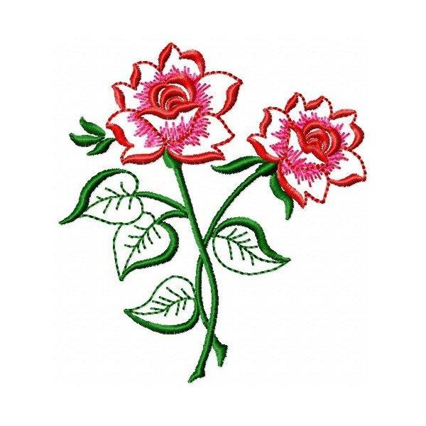 Rosa Belíssima