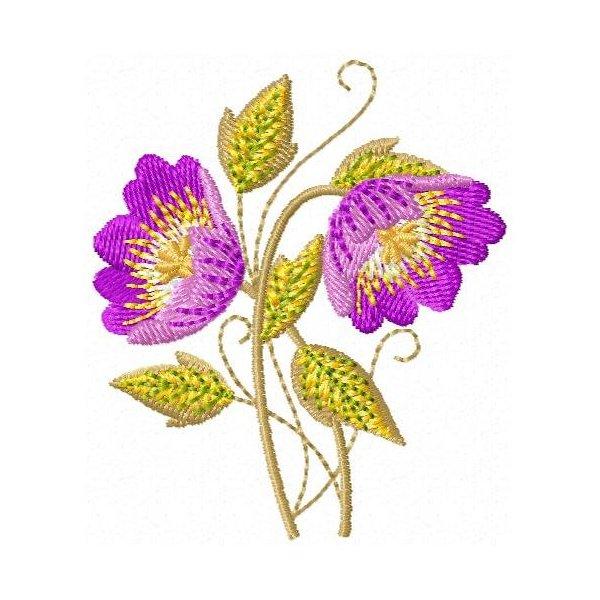 Floral Sharon