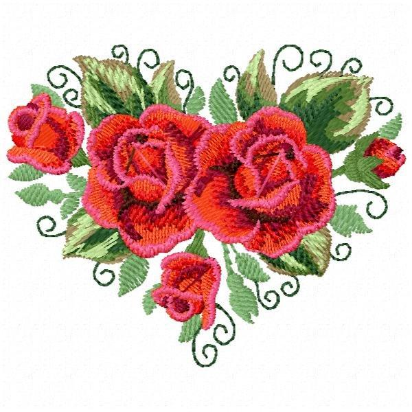 Floral 63 Rosa