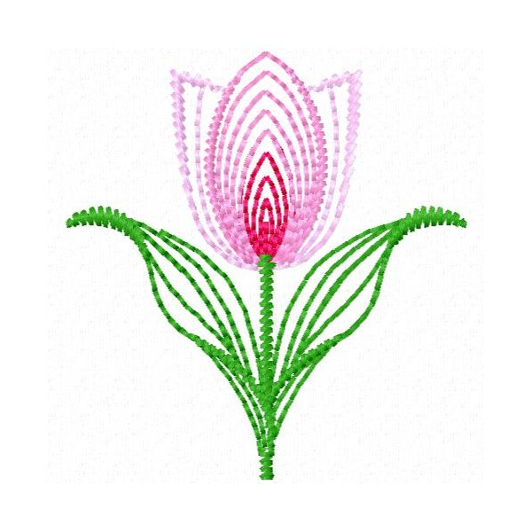 Neon Tulipa Love